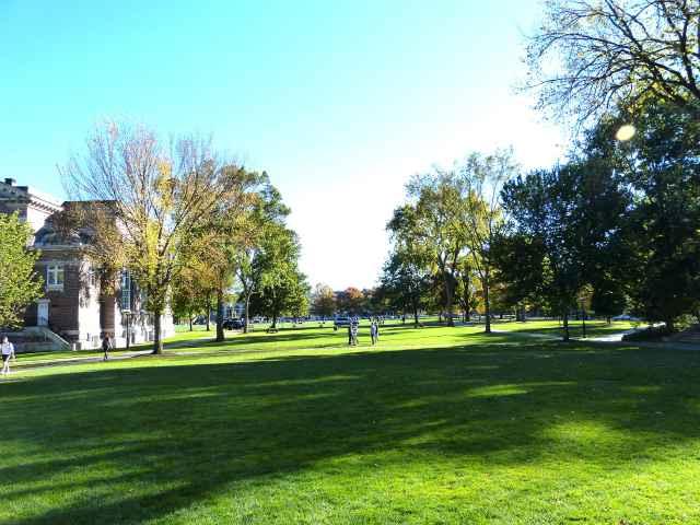 Dartmouth (12)