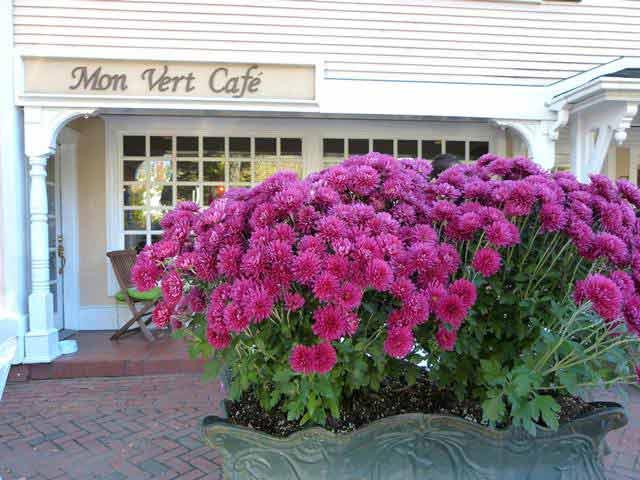 monvertcafe (1)