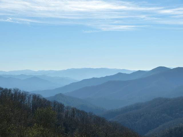 Blue Ridge Mountains (3)