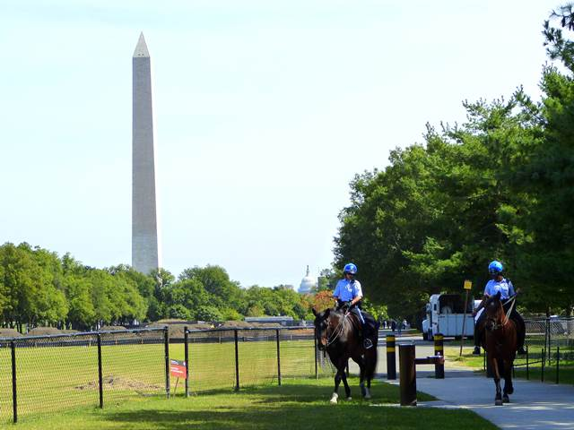 Washingtondc (12)