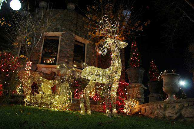 dyker-heights-christmas (24)