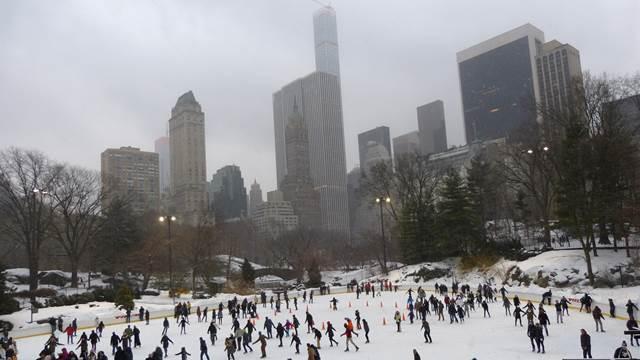 central-park-snow (11)
