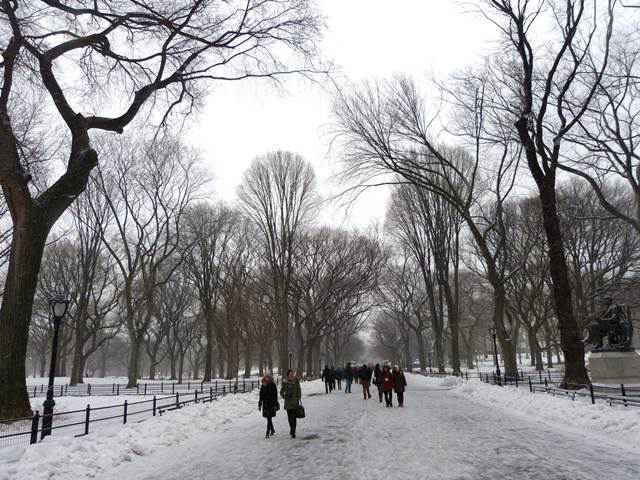 central-park-snow (13)