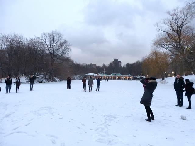 central-park-snow (20)