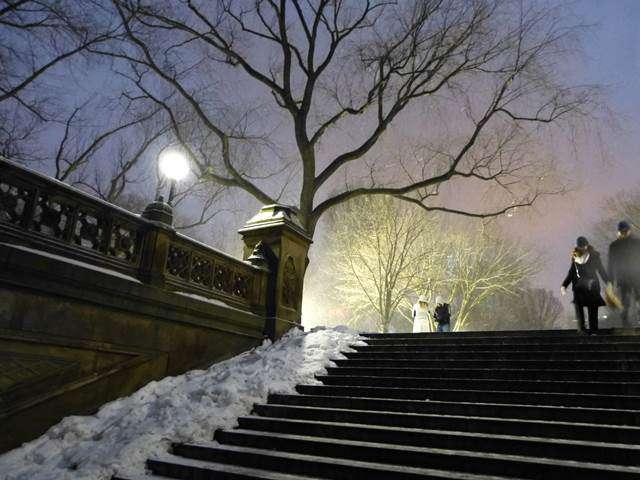 central-park-snow (23)