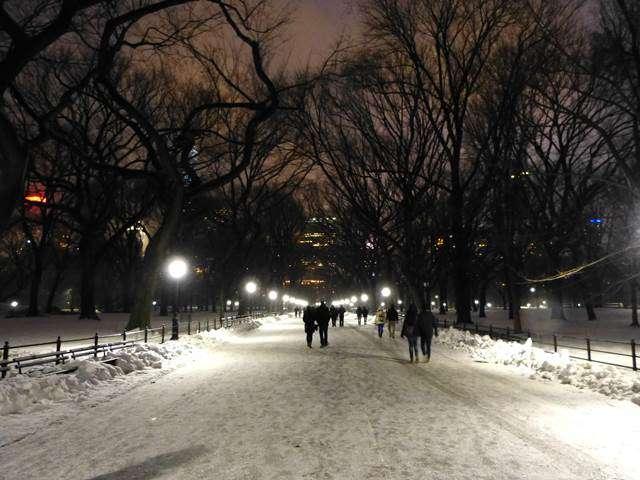 central-park-snow (24)