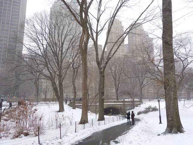 central-park-snow (4)