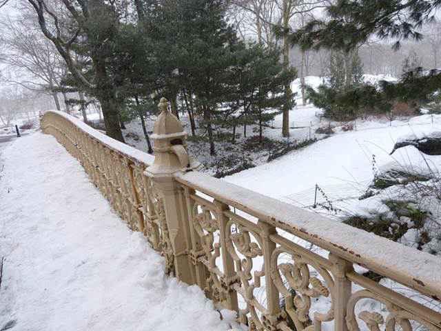 central-park-snow (6)