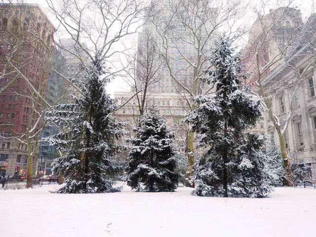 snow nyc (14)