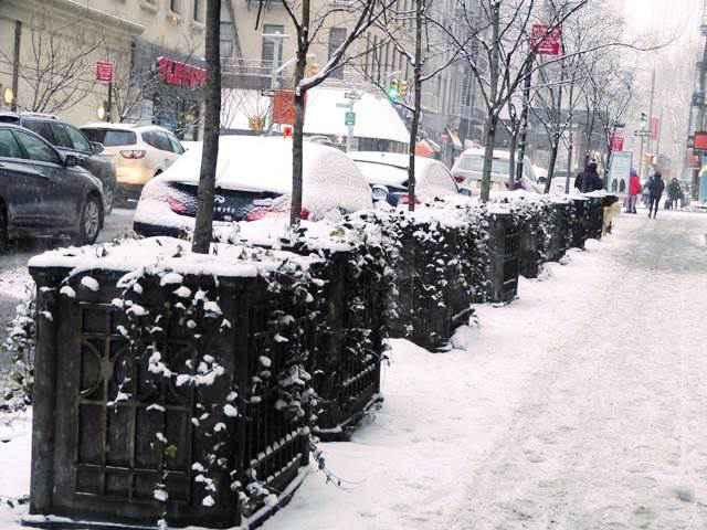 snow nyc (15)