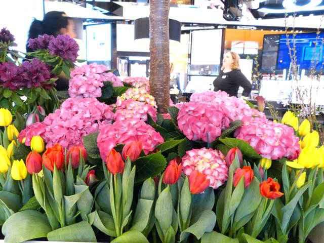Macy's Flower Show (8)