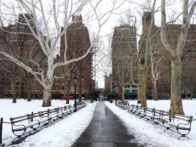 Washington Square Park (7)