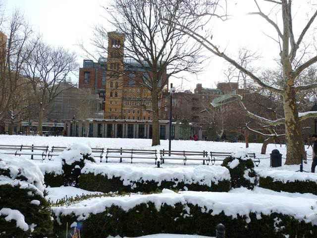 Washington Square Park (8)