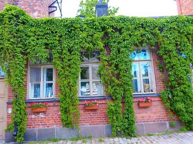 Helsinki(66)