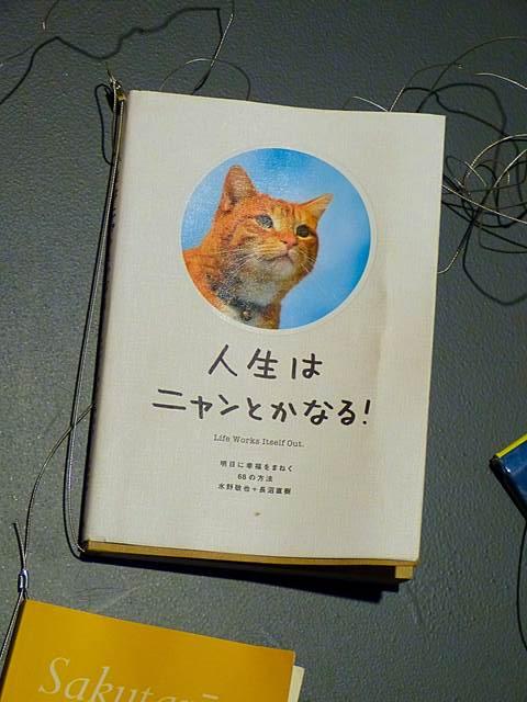 JapanSociety (13)