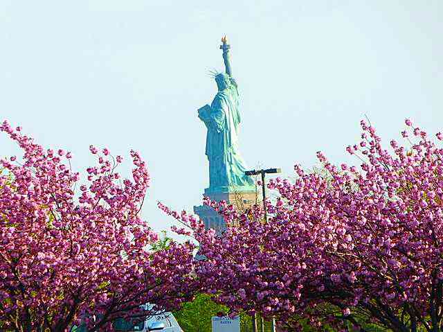 statue-of-liberty (2)