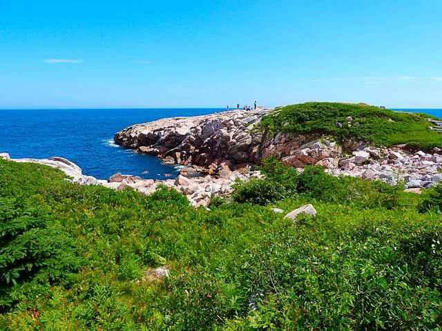 Cape Breton (33)