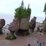 Hopewell Rock (1)