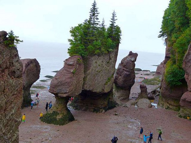Hopewell Rock (1)