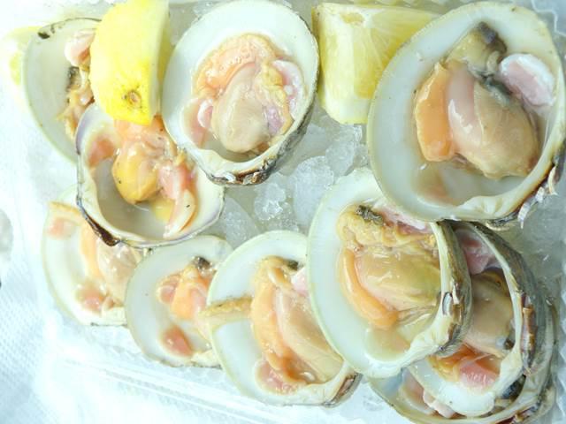 boston-clam