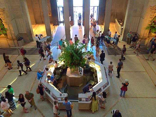 Metropolitan Museum(50)