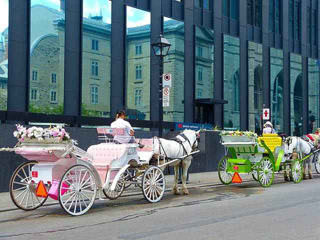 Old Montreal (13)
