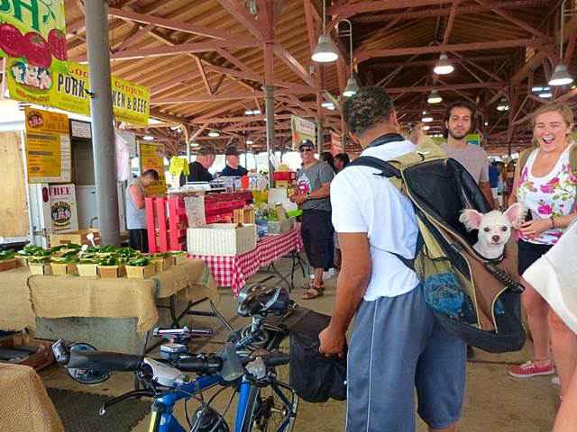 Eastern Market (11)