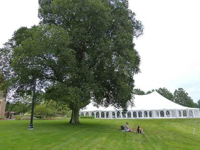 Meadow Brook Hall-20