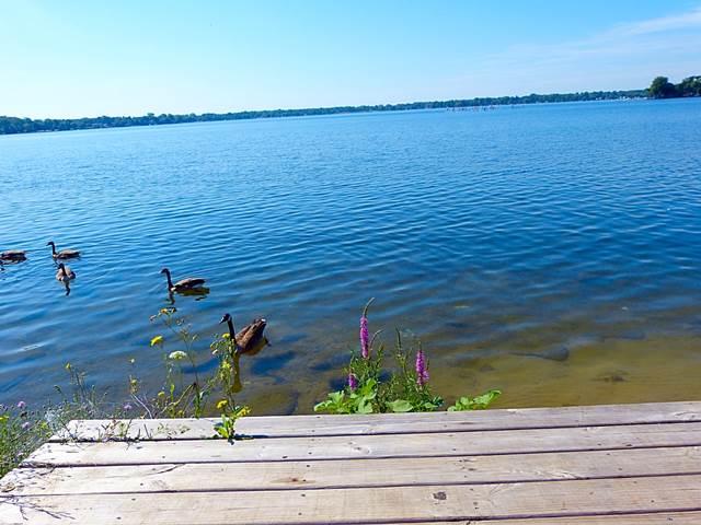 Michigan-lakes (4)