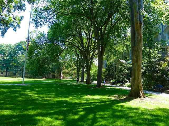 University of Michigan (6)