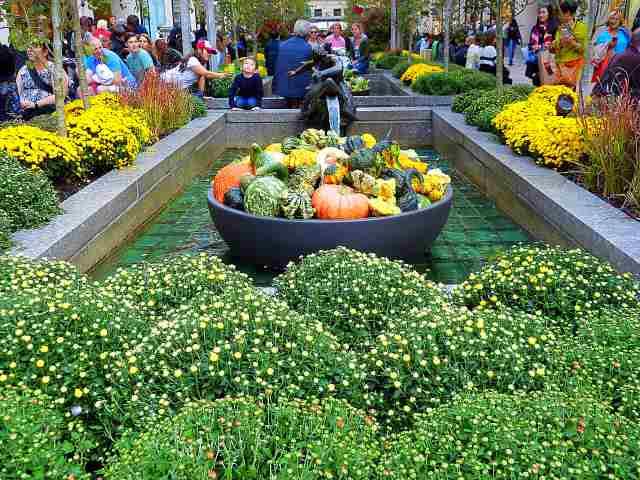 Rockefeller Center Autumn-5