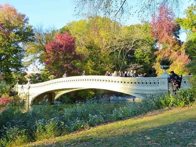 central-park-fall- foliage (18)