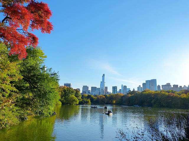 central-park-fall- foliage (20)