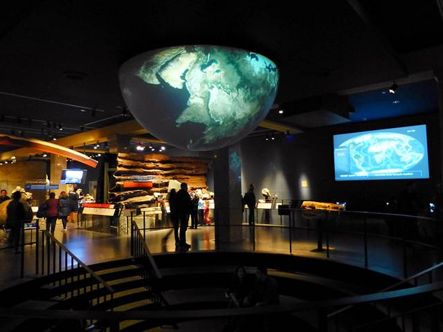 American Museum of Natural History (17)