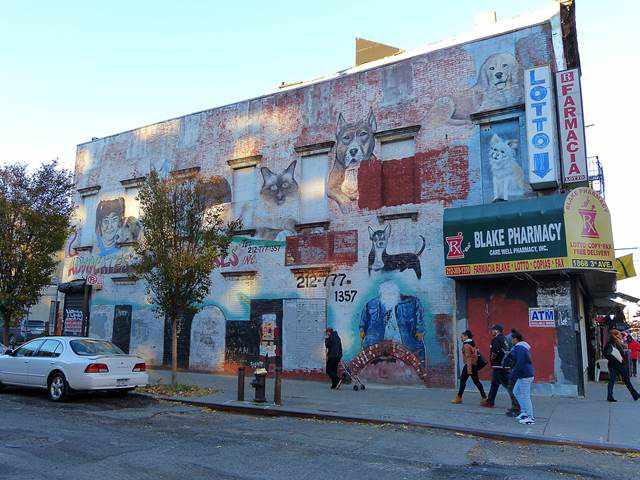 East Harlem Graffiti (2)