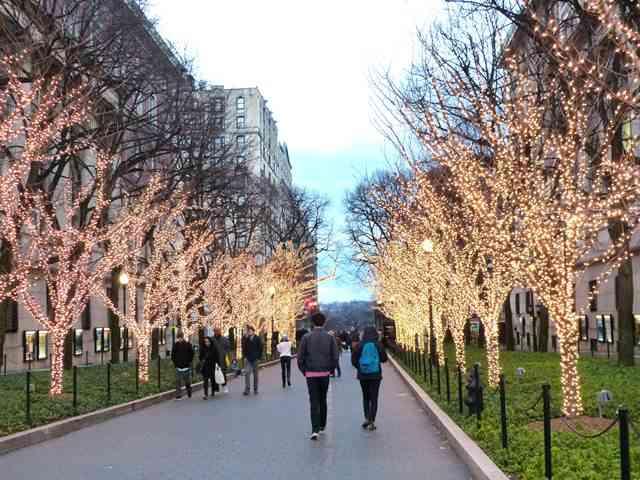 Columbia University (10)