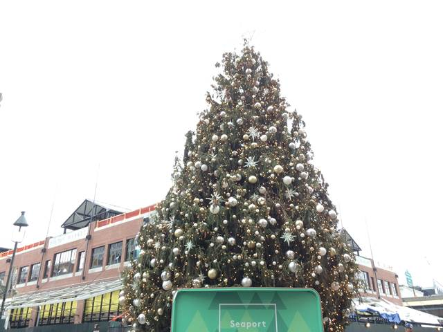 SouthStreetSeaportChristmas (5)
