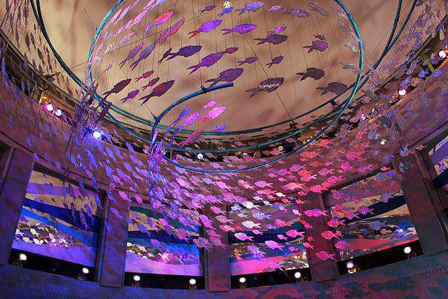 Adventure Aquarium (10)