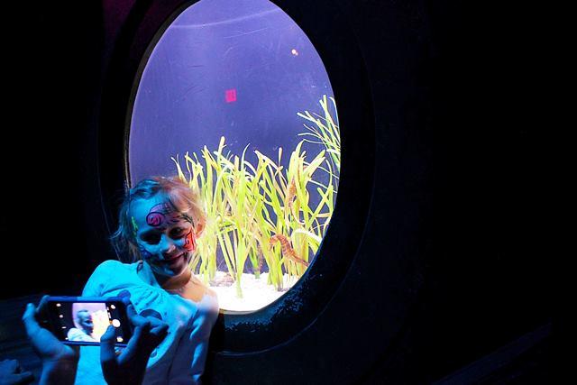 Adventure Aquarium (17)