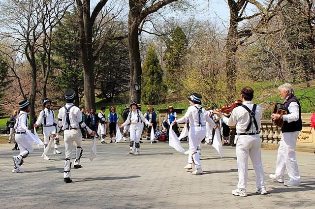 Central Park Magnolia (4)