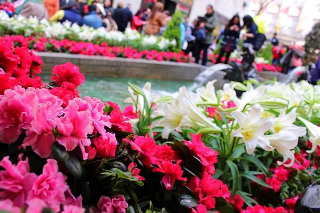 Rockefeller Center Easter (8)