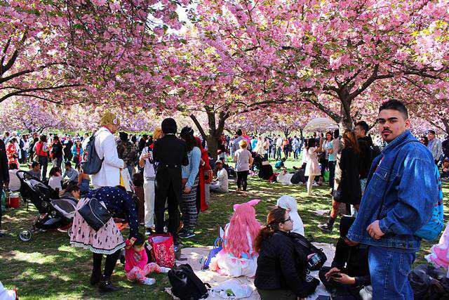 Brooklyn Botanic Garden Spring (17)