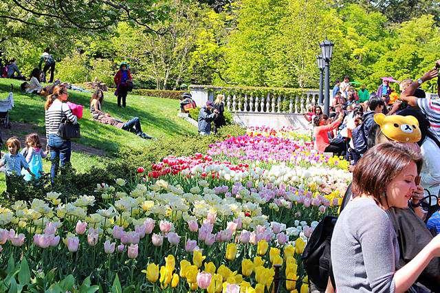 Brooklyn Botanic Garden Spring (6)