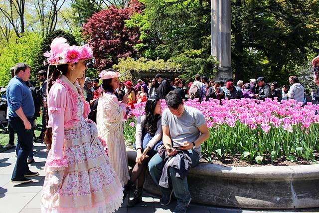 brooklyn botanic garden sakura matsuri (19)
