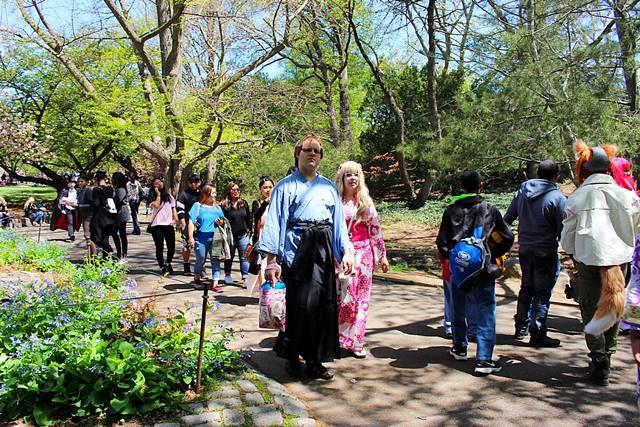 brooklyn botanic garden sakura matsuri (24)