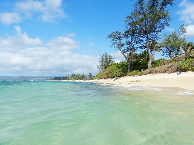 Hawaii Beach (1)