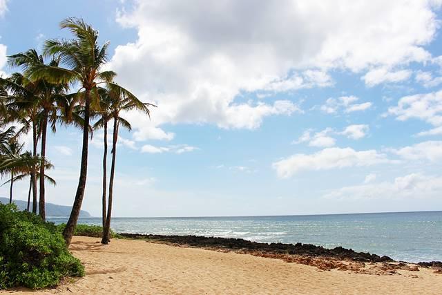 Hawaii Beach (12)