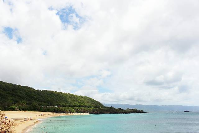 Hawaii Beach (14)