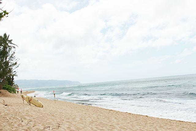 Hawaii Beach (18)