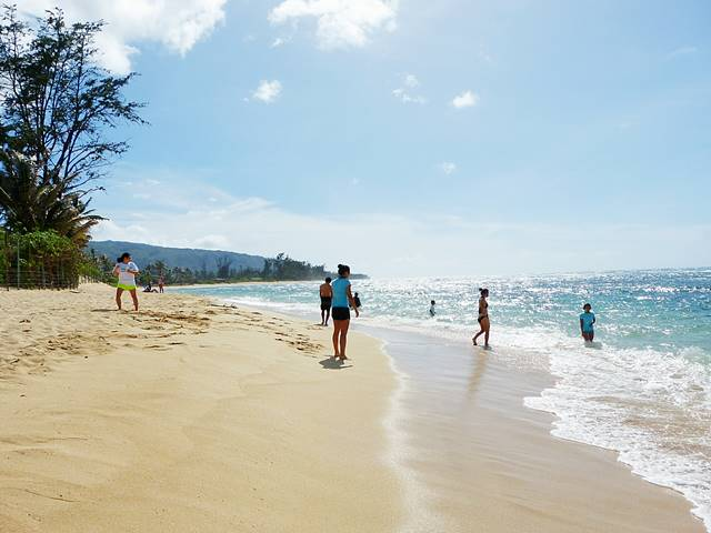 Hawaii Beach (4)